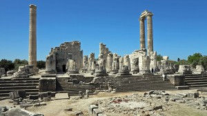 Didyma - Tempel